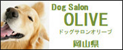 Dog Salon OLIVE